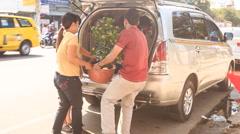 Man Woman Put Tangerine-tree into Car Boot in Vietnam Stock Footage