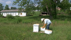 Bee keeper looking at Honey - stock footage