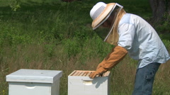 Bee keeper looking at Honey Stock Footage
