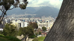 Stock Video Footage of View of Quito beyond the Tree
