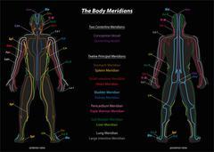 Meridian System Description Chart Black Stock Illustration