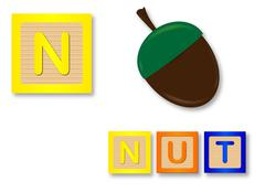 N Is For Nut - stock illustration