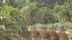 Stock Video Footage of 4K Famous terrace wall bird nest Park Guell Barcelona landmark palm tree place