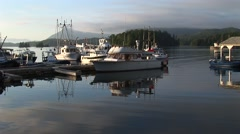 Boats docked in Tofino harbour. Stock Footage