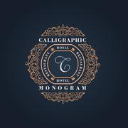 Vintage Decorative Elements Flourishes Calligraphic Ornament - stock illustration