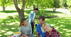 Friends in the park having barbecue Stock Footage