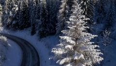 Aerial - Around the tree revealing the road to mountains - stock footage