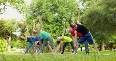 Fitness group doing yoga in park Stock Footage