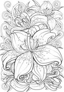 Tiger lily - stock illustration
