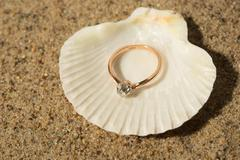 Wedding ring in a shell - stock photo