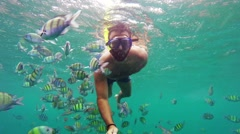 Man snorkeling among fish Stock Footage