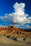 big cactuses in red desert, clouds and sand, red sand in desert - stock photo