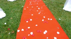 Red carpet covered with rose petals placed in front of the grooms who will - stock footage