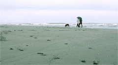 Walk on the beach in winter time - stock footage