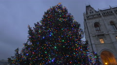 Low angle view of a Christmas tree in front of Budapest Parliament  in Budapest - stock footage