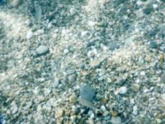 Defocused background of underwater pebbles at the seaside Stock Photos