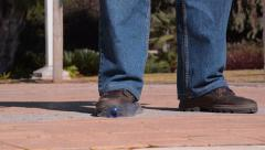 Mans foot crushes a plastic bottle Stock Footage