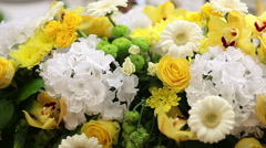 Flowers all around Stock Footage