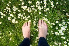 Female feet standing on green grass and white flowers - stock photo