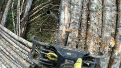 Loading logs. Top view taken with action camera Stock Footage