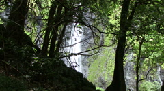 Tahiti rain forest and waterfall through trees - stock footage