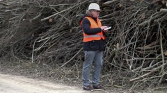Forest inspector talking and show gestures near to to pile sawed bush - stock footage