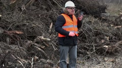 Forest inspector talking on smartphone near to pile sawed bushes and strains Stock Footage