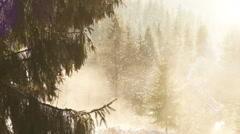 Spring sun melting snow on the fir branches with mountain house on the backgroun Stock Footage