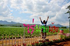 Thai woman portrait in Strawberry Berry Farm and mountain background - stock photo