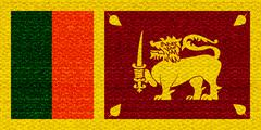 Sri lanka flag - stock illustration