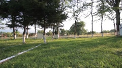 Alley with ladders left in a small cemetery with old trees and green grass Stock Footage