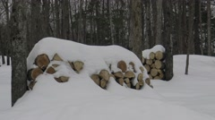 Pile of wood in winter Stock Footage