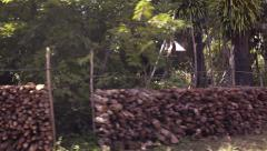 Firewood Stacked at the Forest Edge of a Cambodian Village. Video 1920x1080 Stock Footage