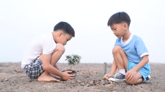 Stock Video Footage of Boy plant seedling to the empty land