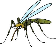 Cartoon doodle mosquito Stock Illustration