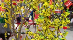 Customers walk in a Lotte Mart supermarket decorated for Tet, Lunar New Year Stock Footage