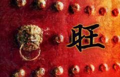 Flourish Chinese Character - stock illustration