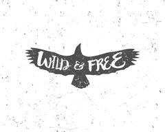 Vintage eagle with hand drawn lettering slogan. Retro silhouette monochrome - stock illustration