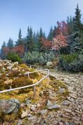 Stone Trail in the Mountains - stock photo