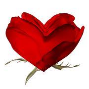 Stylish red rose isolated on white. EPS 10 Piirros
