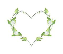 Stock Illustration of White Jasmine Blossoms in A Heart Shape