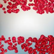 Red rose petals. EPS 10 Stock Illustration