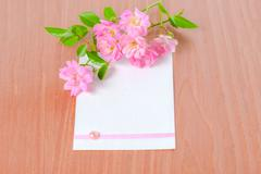 old paper tied with ribbon and pink rose on wood background, closeup - stock photo