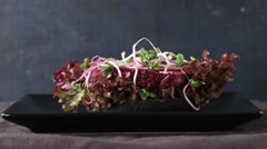 Stock Video Footage of Homemade vegan black burger with beetroot cutlet, sprouts, champignon and green