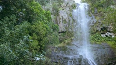 Maui Waterfall Forest Hawaii Green Timelapse Nature Water Travel Mountain Stock Footage