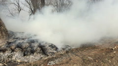 Fire in the woods with a strong smoke, slow motion. Stock Footage