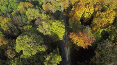 Aerial shot of mountain forest road, beautiful Fall color in the trees - stock footage