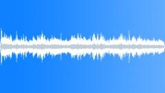 AMB_Crowd Chatter_MD_National Harbor.wav Sound Effect