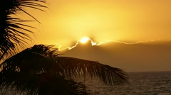 Orange Sky Silhouette Palm Tree Branch Nature Sunset Beach Sea Tropical Island - stock footage