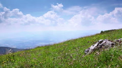 Fresh wind blows on the top of the hill and makes grass and field flowers shiver Stock Footage